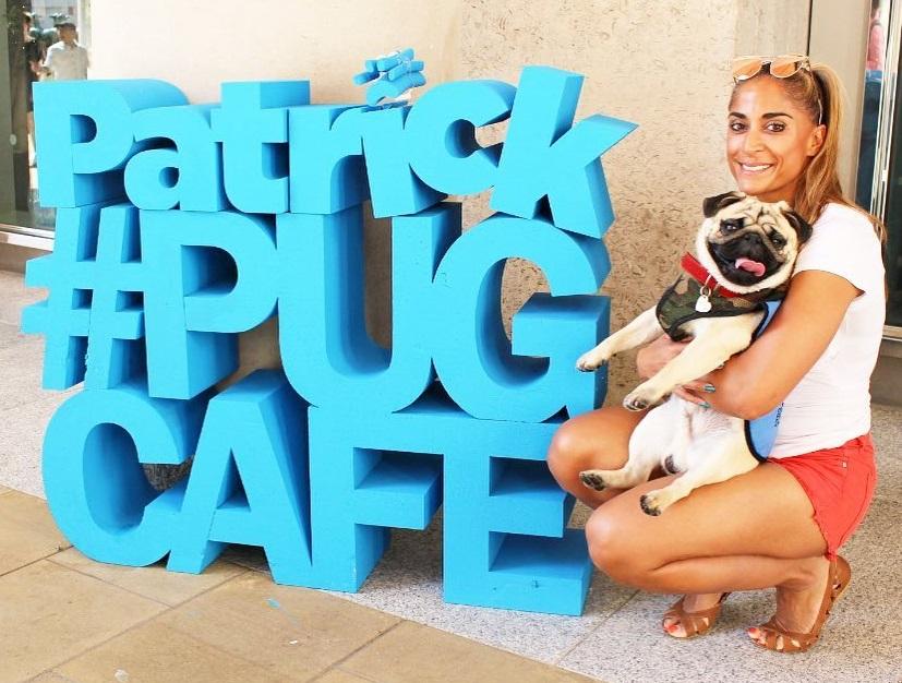 Pug Cafe Polystyrene letters